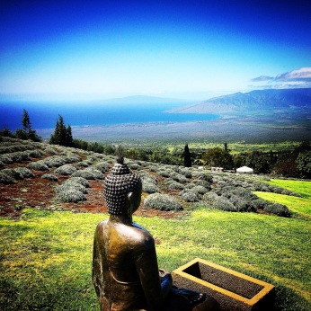 The view from a lavender farm, Maui, March 2015.