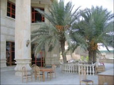 Our deck in Tikrit. We could eat from the date palms. Fortunately you could usually hear the outgoing fire from insurgent mortars before the rounds reached the base giving us enough time to get back inside. I will say watching incoming mortar rounds fall short and detonate on the Tigris was a bit thrilling.